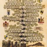 Stammbaum Familie Boscher