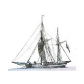 schiff-2