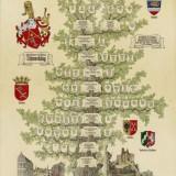 Stammbaum-Amerding