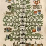 Stammbaum-Merklein