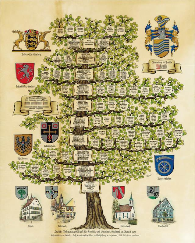 So entsteht ein Stammbaum - Pro Heraldica
